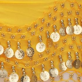 myntsjal med guldmynt