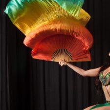 orientalisk-dans-boka16